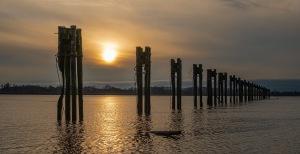 fraser river pilings, steveston, british columbia, canada