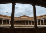 Flight, Charles V Palace, Alhambra, Granada, Andalucia, Spain