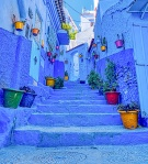 Jolly Blue, Chefchaouen, Morocco
