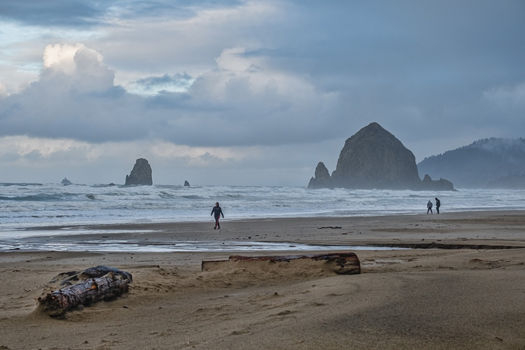 Locals and Tourists, Cannon Beach, Oregon, United States of America
