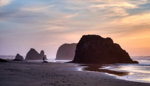 Clam Diggers, Seaside Creek Beach, Mendocino County, Pacific Coast Highway, California, United States of America