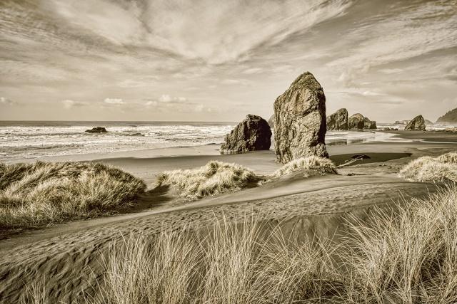 Coastal Textures, Gold Beach, Oregon Coast Highway, Oregon, United States of America