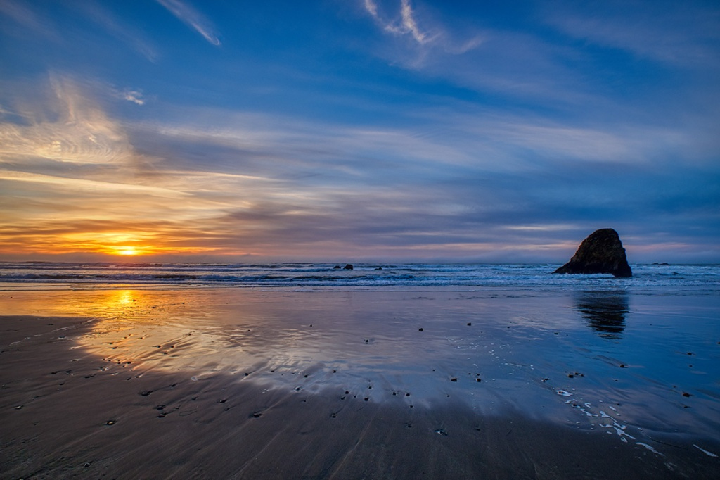 Paroxysm of Colour; Oregon Coast Highway, Oregon, United States of America