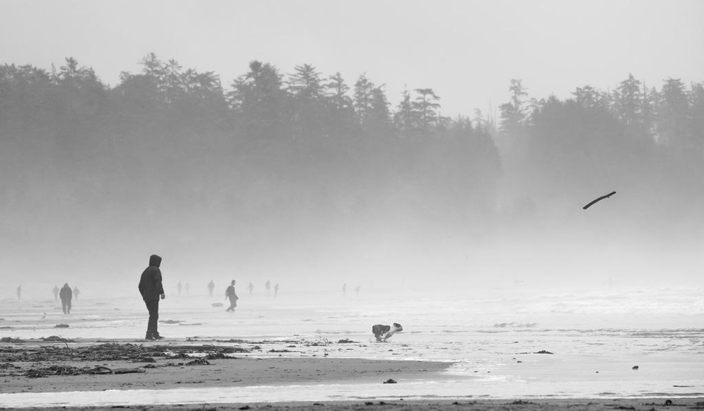 Fetch, Long Beach, Pacific Rim National Park, Vancouver Island, British Columbia, Canada