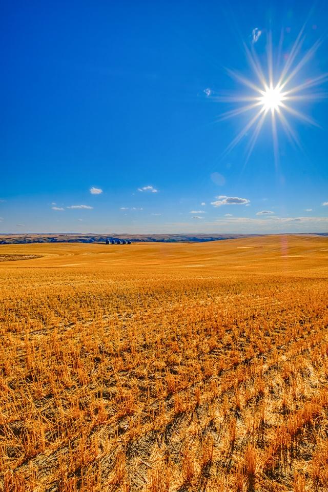 Post Harvest, Drumheller, Alberta, Canada