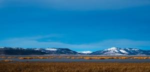 Solitude, Goose Lake State Park, New Pine Creek, Oregon, United States of America